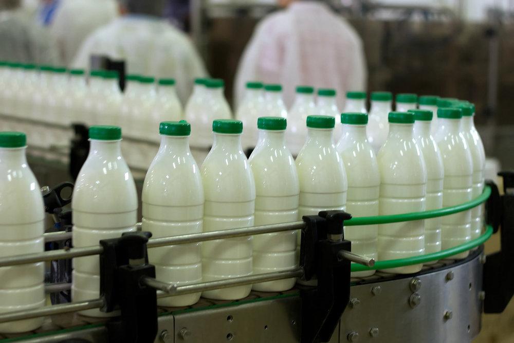 کرونا با مصرف شیر به انسان منتقل نمی شود