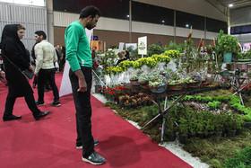 هفدهمین نمایشگاه بینالمللی گل و گیاه مشهد برگزار میشود