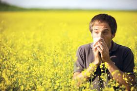 تغییرات اقلیمی،آلودگی محیط زیست و آلودگی هوا مهمترین عوامل شیوع آلرژی فصلی