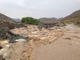 افزایش ۹۵ میلی متری بارندگی ها در نطنز