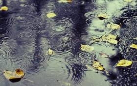 رشد یک درصدی بارش ها در سال آبیِ جاری/۱۵۴ میلیمتر بارش در حوضه فلات مرکزی