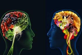 مصرف مداوم غذاهای چرب، مغز را در کنترل اشتها دچار مشکل می کند