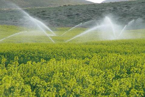 توسعه سامانههای نوین آبیاری در ۱۸۵ هزار هکتار