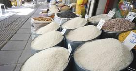 احتکار برنج داخلی از سوی سودجویان/دولت بر انبارداری برنج نظارت کند