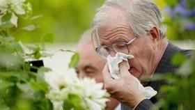 آمار بیماران مبتلا به آلرژی رو به افزایش است