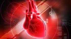 نارسایی قلب همچون سرطان حیات انسان را تهدید می کند