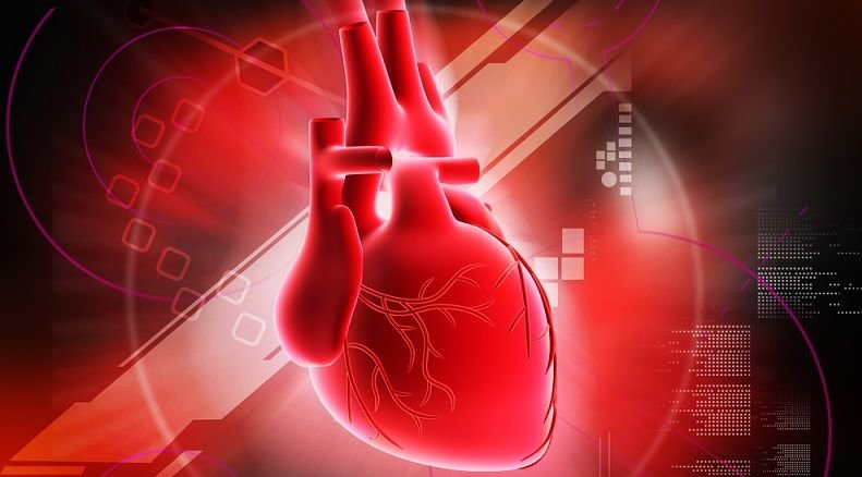 قلبی قوی با تغذیهای سالم