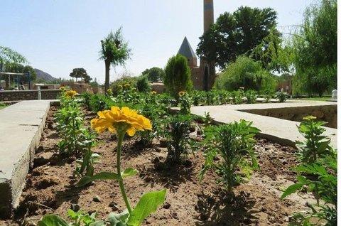 زیباسازی شهر زرند با کاشت گلهای فصلی