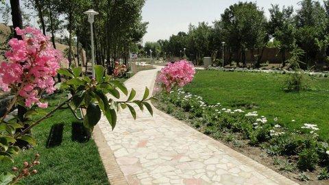 بوستان محلی