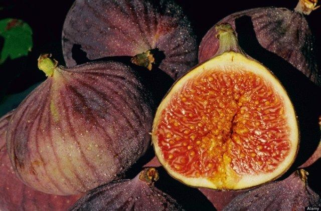 خواص شگفت انگیز انجیر میوه بهشتی