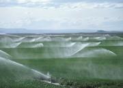 کشاورزی و آبیاری