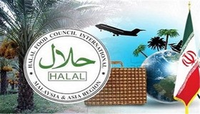 Iran seeking Halal tourism: Official