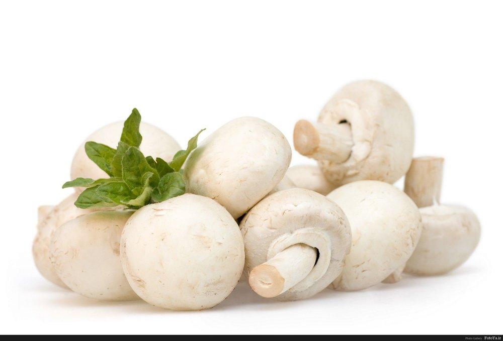 مصرف قارچ را فراموش نکنید/ ۱۴ دلیل برای خوردن انبه