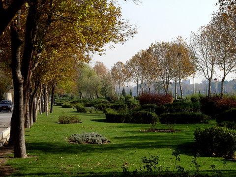 کاهش سهم فضاهای سبز، آلودگیهای زیستمحیطی را افزایش داده است