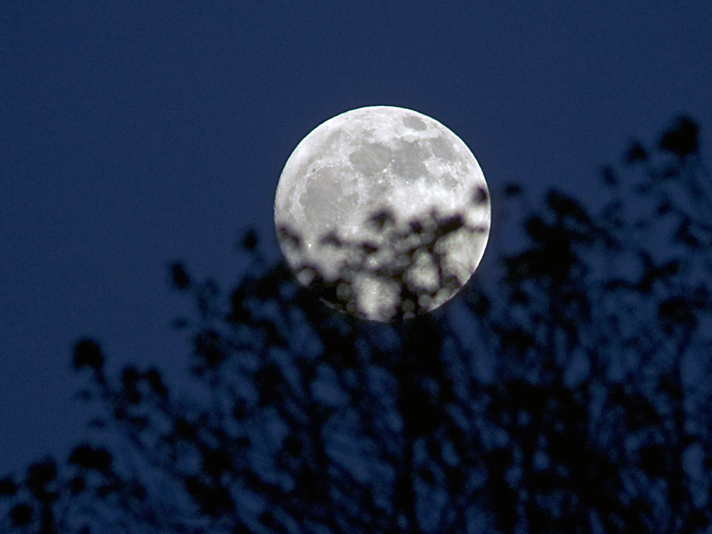 """کره ماه را بشناسید/ """"ماه"""" گرد نیست"""