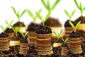 کاهش بروکراسی اداری راهکاری برای جذب سرمایههای کارآمد