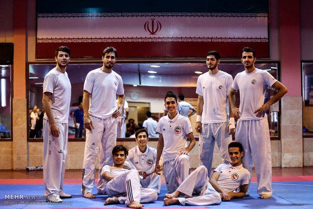Iran ranks 3rd in 2017 World Taekwondo Champs