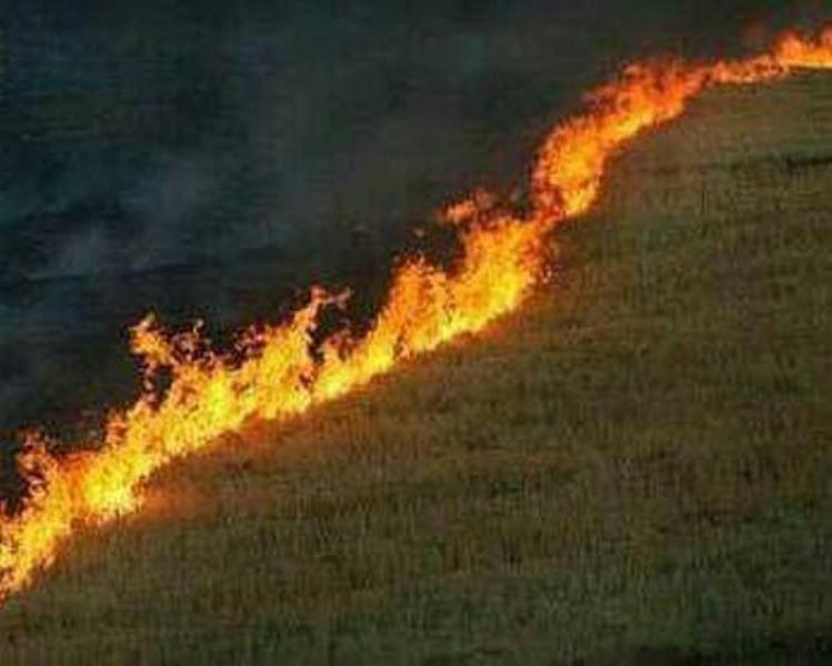 آتشسوزی در نیم هکتار از مراتع سمیرم مهار شد
