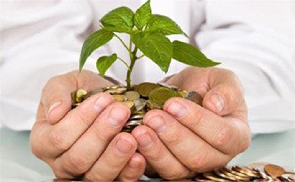 رفتارهای سلیقه ای مانع فعالیت سرمایه گذاران نشود