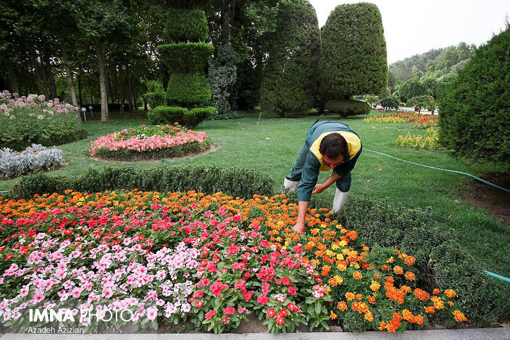 فرش گل در کاخ مروارید/طراحی نقشه هوشمند تردد شهروندان شیرازی