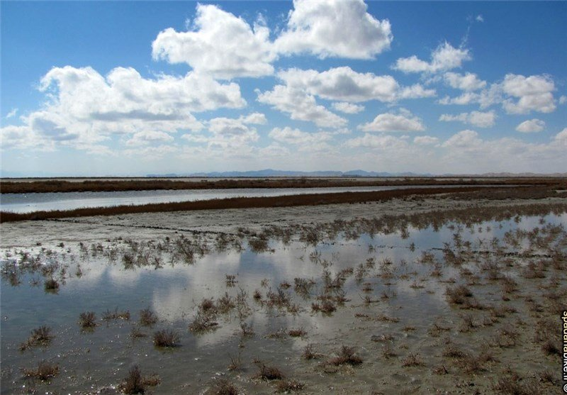 Gavkhooni lagoon to be revived in near future