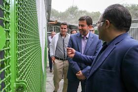 پتانسیل بالای مرکز تکثیر پرندگان اصفهان در تولید گونه های نادر