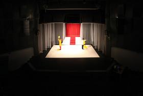 سالن ها و شوراهای نظارت بر تئاتر باید تخصصی شوند
