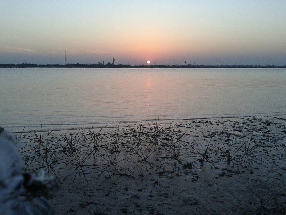 پاکسازی آلودگی نفتی در اروندرود