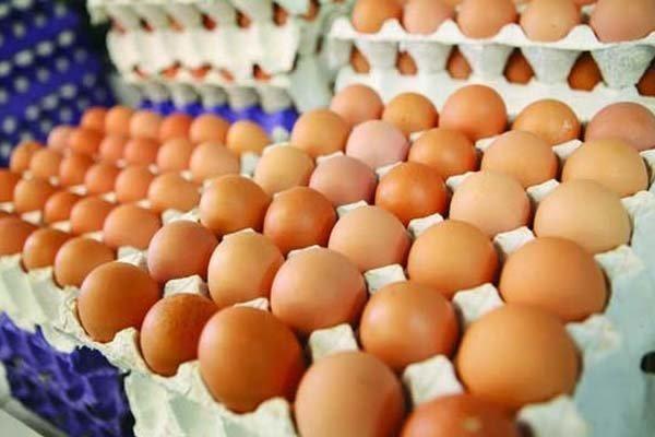 دو اقدام برای کنترل قیمت تخم مرغ در بازار