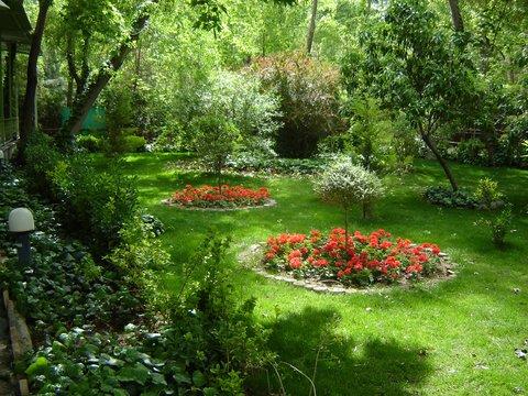 بهسازی فضای سبز میدان سرحدی فردیس