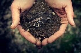همایش گرامیداشت روز جهانی خاک در دانشگاه صنعتی اصفهان برگزار شد