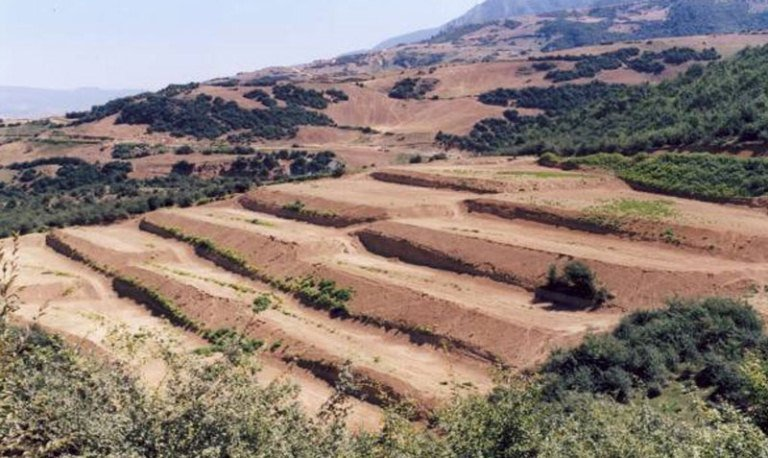 اصفهان سالانه ۱۵ تن در هکتار فرسایش خاک دارد