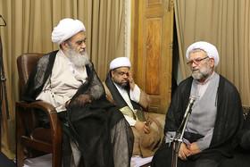 دیدار مهمانان خارجی اجلاس پیرغلامان حسینی با آیت الله مظاهری+تصاویر
