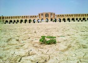 کمبود آب برای ۵ میلیون ایرانی/تمدن زاینده رود متعلق به همه ایران است
