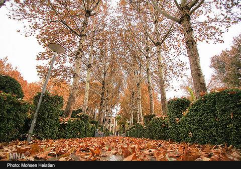 Fall in Isfahan