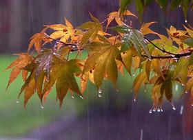 کاهش ۲تا ۳ درجهای دما در استان/احتمال بارش پراکنده در اصفهان