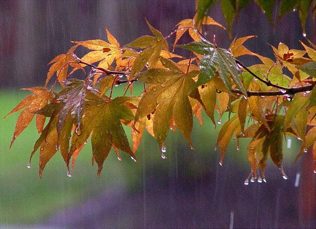 اصفهان در انتظار باران