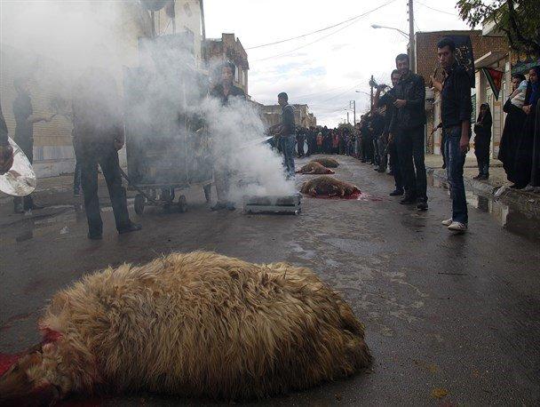 نظارت دامپزشکی بر ذبح قربانی در تاسوعا و عاشورای حسینی