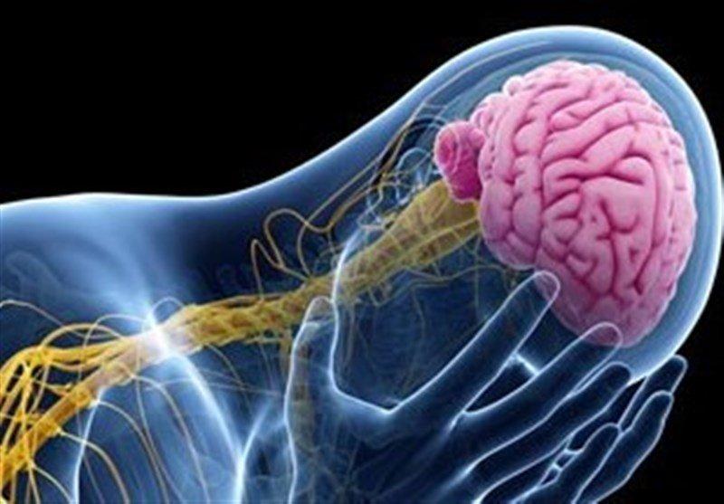 نخستین آزمون تشخیصی فارسی برای جراحی مغز بیماران صرعی تدوین شد