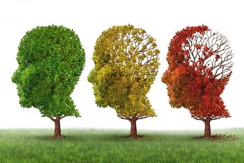 در مورد بیماری آلزایمر چه میدانید؟