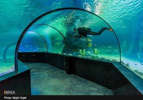 Najvan aquarium