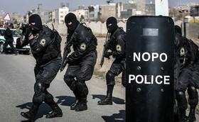رویکرد پلیس نوپو علمی و اجتماعی است