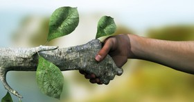حفظ و پویایی محیط زیست نیازمند مشارکت جمعی است