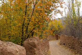 پاییز هزار رنگ - ابیانه