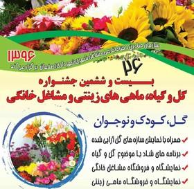 جشنواره گل و گیاه، ماهی های زینتی و مشاغل خانگی در ایستگاه بیست و ششم