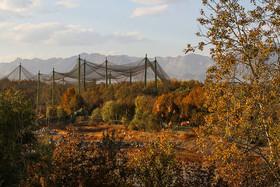 پاییز هزار رنگ- پارک جنگلی ناژوان