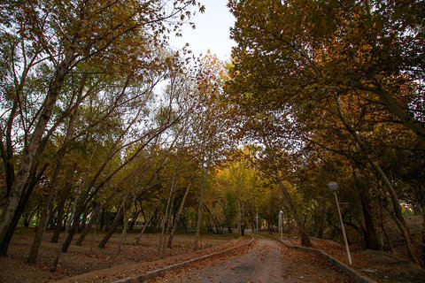 Isfahan to develop Eco Park