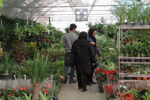 بهرهبرداری از مرحله نخست پروژه باغ تندرستی در سال ۹۸