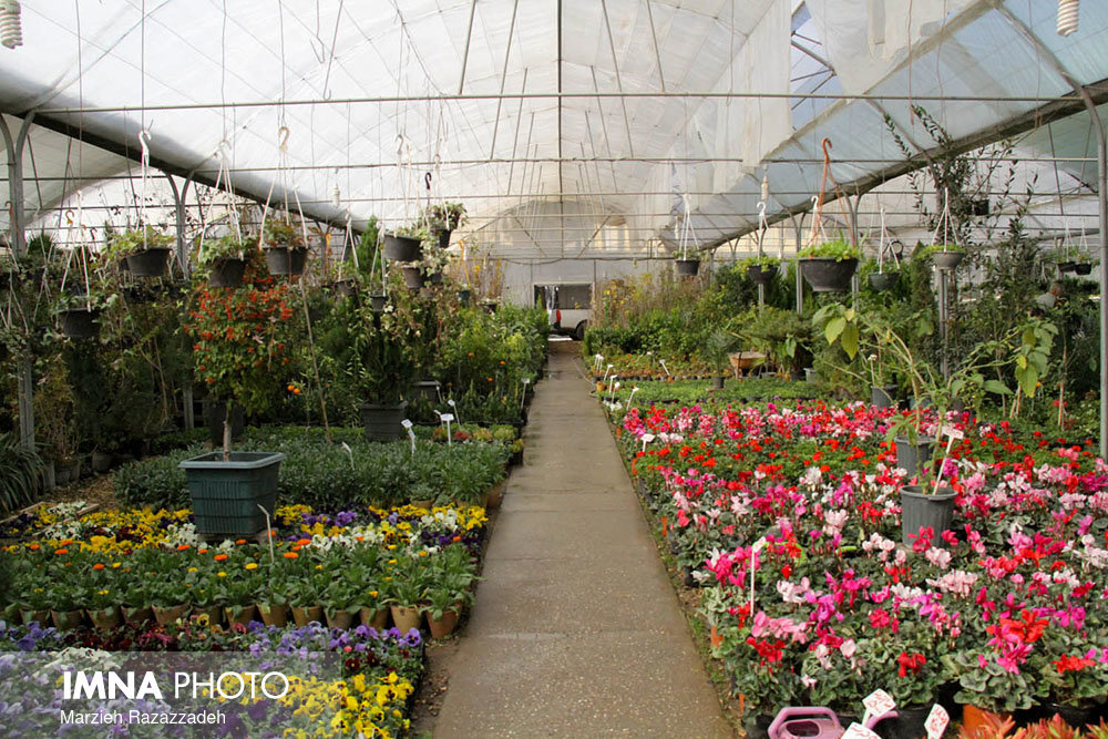 26th Festival of Plants, Flowers, Ornamental Fish, & Home Jobs underway in Isfahan