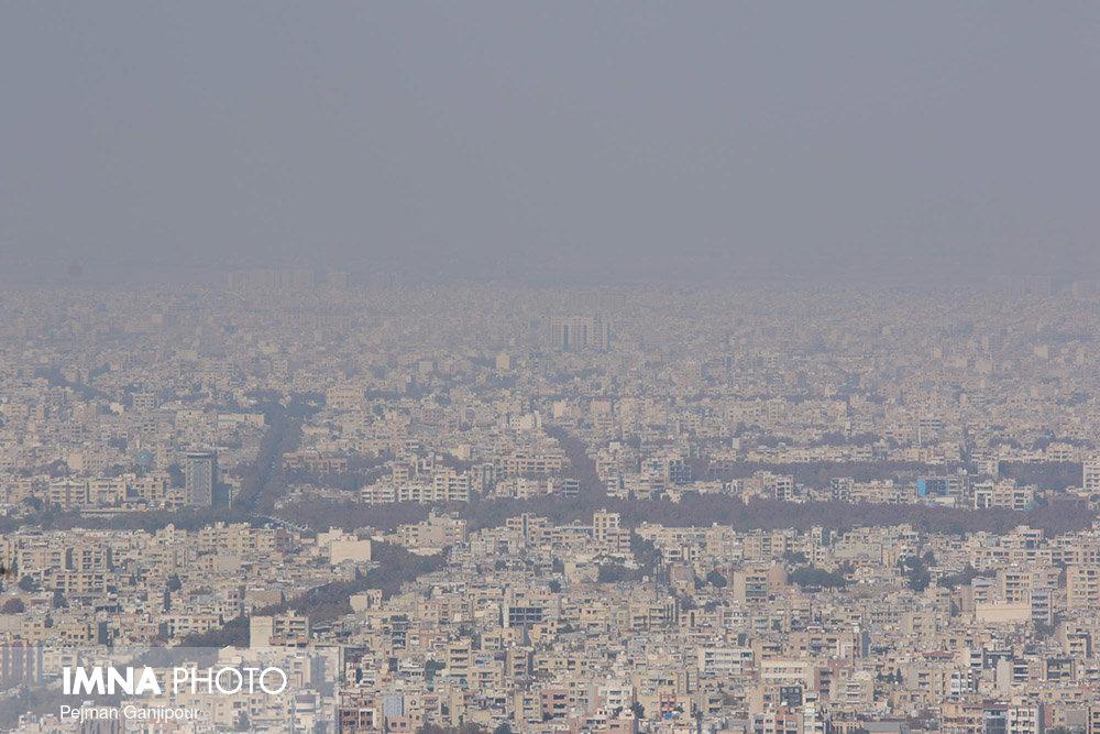 شهر پنجه در پنجه آلودگی
